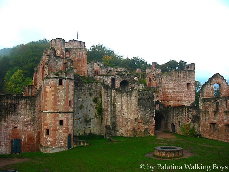 Hardenburg, Bad Dürkheim, Germany: David found this castle for me since