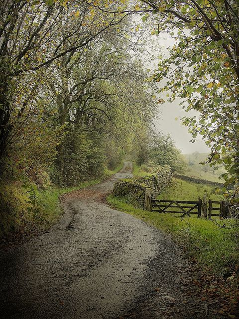 Quiet lane in the english countryside, Lake District