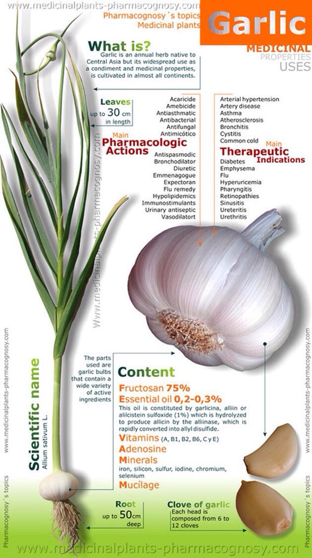55 Best Images About Superfoods Garlic On Pinterest