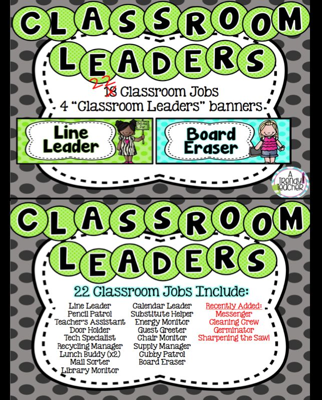 Classroom Leadership Roles