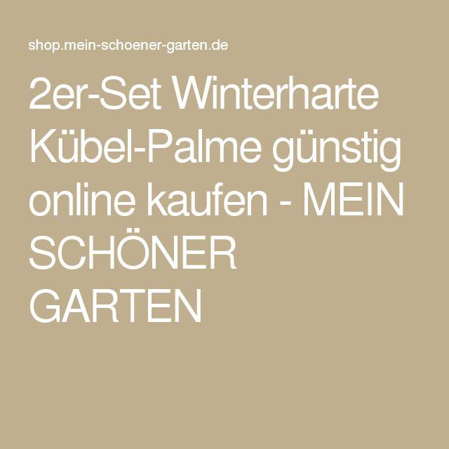 2er-Set Winterharte Kübel-Palme günstig online kaufen - MEIN SCHÖNER GARTEN