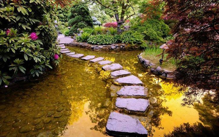 allée de jardin en pas japonais et passage à gué en pierre naturelle, bassin d'eau et plantes aquatiques