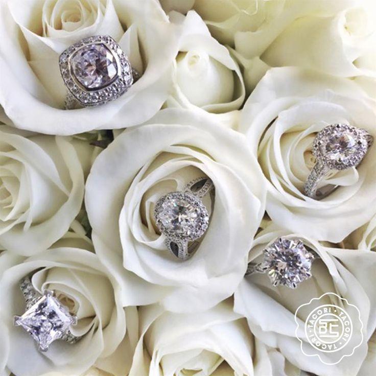 71 best Tacori Bridal images on Pinterest | Wedding bands ...