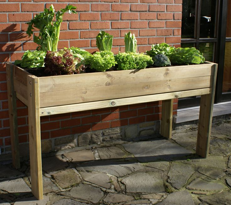 1000 images about potager au balcon on pinterest for Carre potager sur balcon