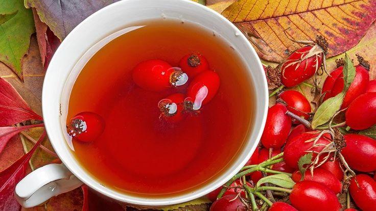 A csipkebogyó tea, más nevén Rosa canina, nemcsak finom, de egészségünkre is pozitív hatással lehet. Immunerősítő és segíti az emésztést. Elkészítése pedig nagyon egyszerű: Két teáskanálnyi csipkebogyót belerakunk egy csészébe, és leöntjük forró vízzel, majd 5 percig hagyjuk ázni. Ez a tea nagyon jó hatással van a lázzal járó betegségek kúrálásában is, ami télen elég gyakorinak mondható.   Kellemes teázást kívánunk! UKKO Tea #ukkotea #tea #ukko #magyar