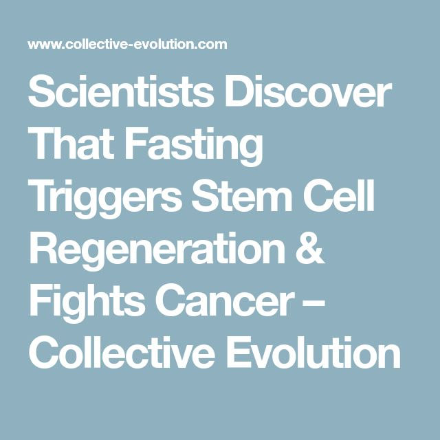 Scientists Discover That Fasting Triggers Stem Cell Regeneration & Fights Cancer – Collective Evolution