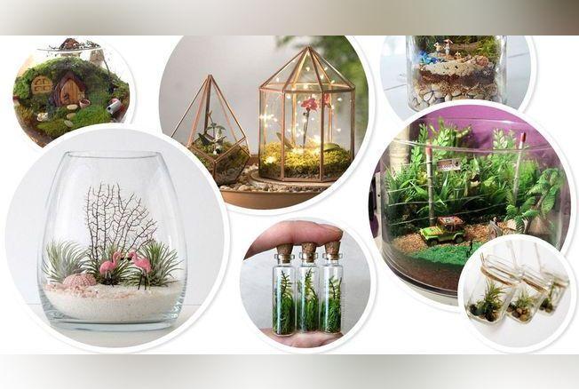 Les terrariums végétaux sont partout ! Jadis réservés à quelques aficionados, on les trouve désormais dans la plupart des enseignes de déco. Seulement, leur prix souvent prohibitif peut refréner les ardeurs des jardiniers en herbe. Alors, pourquoi ne pas les réaliser soi-même ? On vous montre commen...