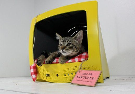 DO WANT. Cat bed made from an upcycled television.Cat Beds, Ideas, Pets Beds, Pet Beds, Tvs, Cat House, Cathouse, Kitty, Diy