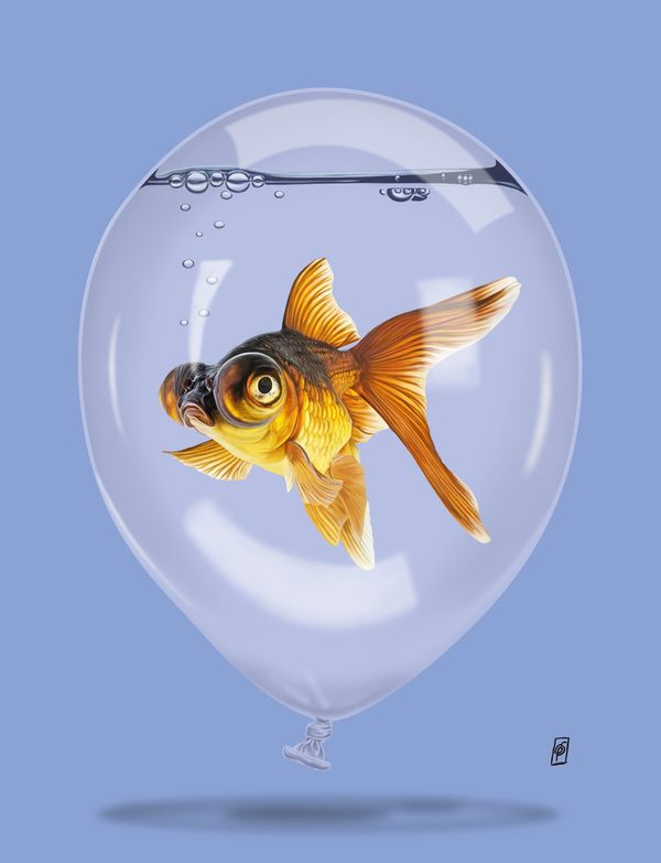 Inflated (Colour) art | decor | wall art | inspiration | animals | home decor | idea | humor | gifts
