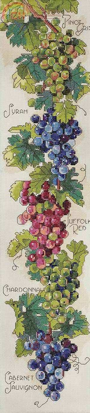 Grapes & wine cross stitch