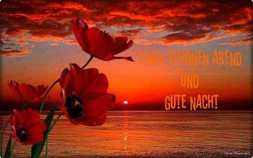 ich wünsche euch noch einen schönen abend und später eine gute nacht  - http://www.1pic4u.com/blog/2014/05/18/ich-wuensche-euch-noch-einen-schoenen-abend-und-spaeter-eine-gute-nacht-78/