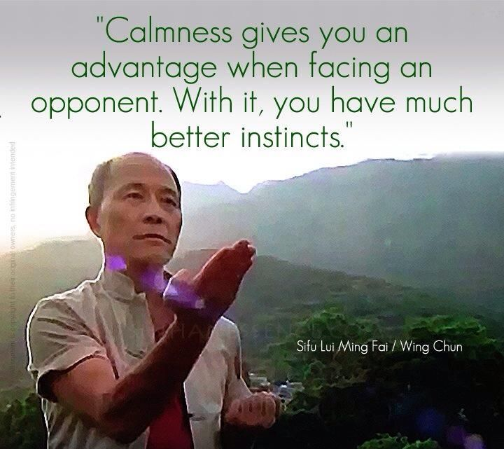 Martial arts quotes Wing chun | All for martial arts tumblr