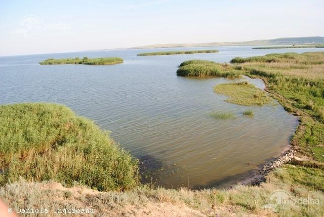 Insula Gradistea - lacul Razim  Este situata in nordul lacului Razim. O insula calcaroasa acoperita de pajisti stepizate.  http://www.info-delta.ro/delta-dunarii-17/insula-gradistea---lacul-razim-400.html
