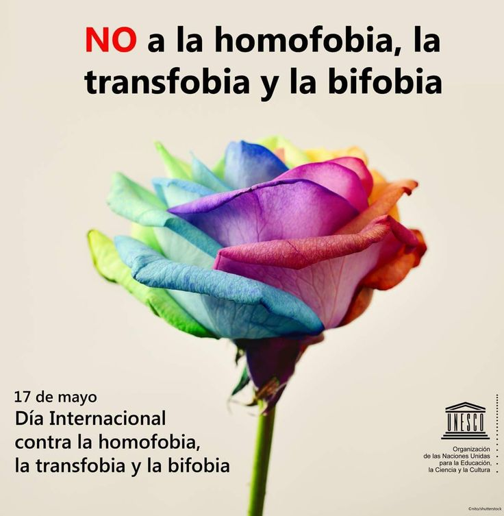 Love is not a crime. Discrimination is not an option. Love is just love. Let's use the power of education to counter intolerance. Just Love, Let It Be, Liberal Politics, International Day, United Nations, Social Justice, Equality, Crime, Social Media