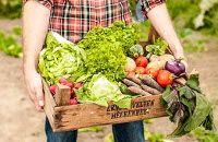 Gutscheine für Ackerhelden – Bio-Gemüseäcker zum selbst Ernten  Die Ackerhelden vermieten bundesweit Bio-Gemüseäcker zum selbst Ernten. Alle Äcker an allen Standorten sind biozertifiziert und mit über 20 verschiedenen Gemüsesorten vorbepflanzt. Von Mitte Mai bis Ende November bewirtschaften die Kunden des Unternehmens ihren Acker und ernten jede Menge knackfrisches Biogemüse. Beratung, Geräte, Wasser und Gemüse zum Nachpflanzen- und säen sind im Paket inklusive.