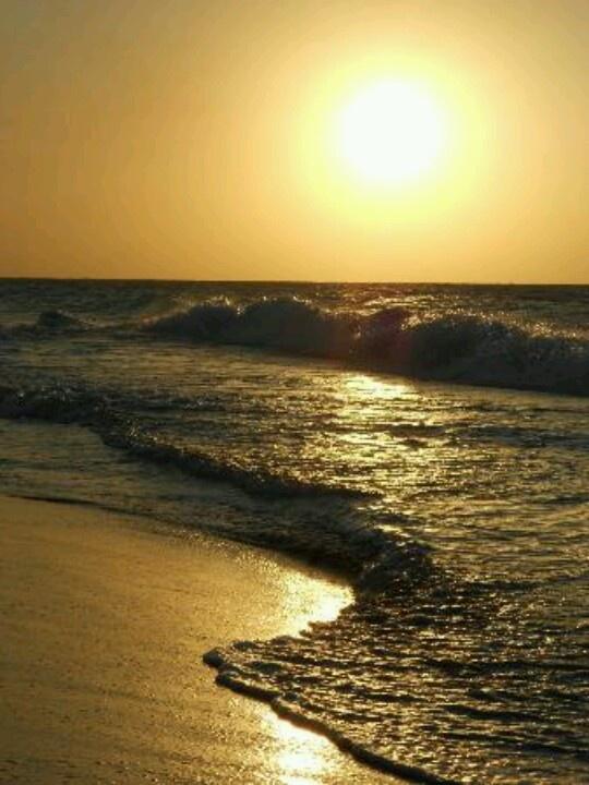 Sol sirenas coral, Cuba