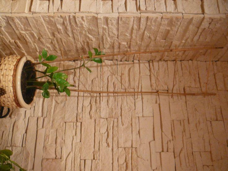 http://kamien-wschowa-kamiendekoracyjny.blogspot.com/2015/04/wschowa-dekoracyjny-wewnetrzny-kamien.html