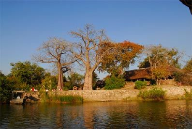 Mvuu Lodge situated along the banks of the Zambezi