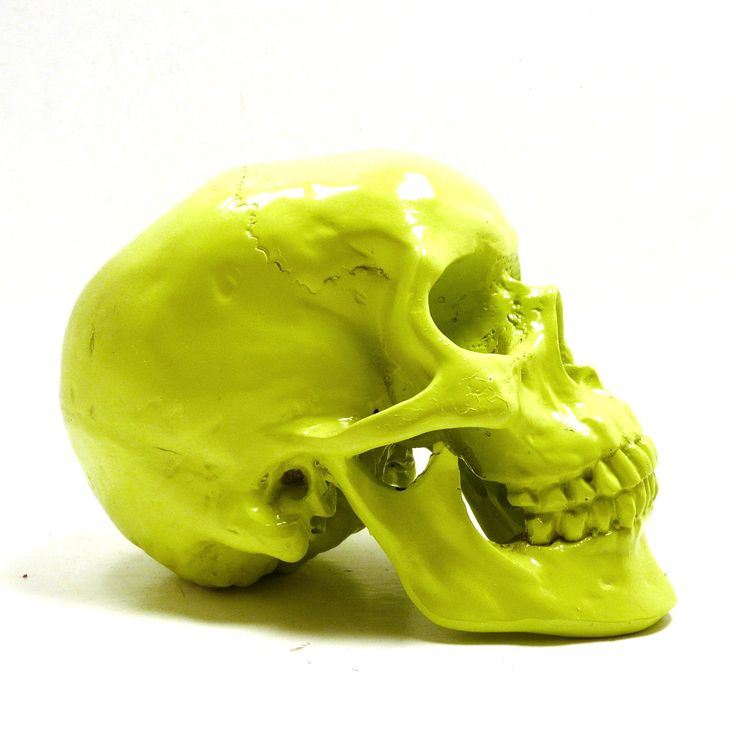 Neon Skull Head, Halloween, Lime Green, Spooky, Skulls, Eclectic Home Decor Part 53