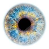 Edouard Janssens, human iris project 'Windows to the Soul'