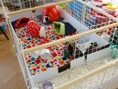BA Different Sort of Handmade :: Guinea Pig Cage