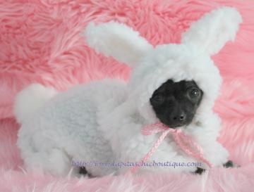 dog costume snuggle bunny little puppy rabbit halloween costume for the small dog small sizes - Halloween Costume For Small Dogs