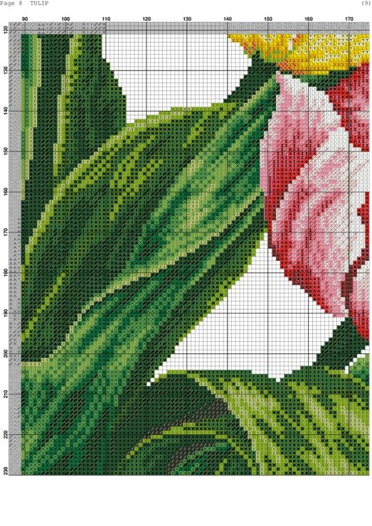 Tulips 10/14