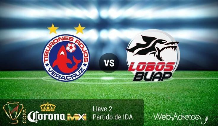 Veracruz vs Lobos BUAP, Copa MX Clausura 2016 ¡En vivo por internet! - https://webadictos.com/2016/02/02/veracruz-vs-lobos-buap-copa-mx-c2016/?utm_source=PN&utm_medium=Pinterest&utm_campaign=PN%2Bposts