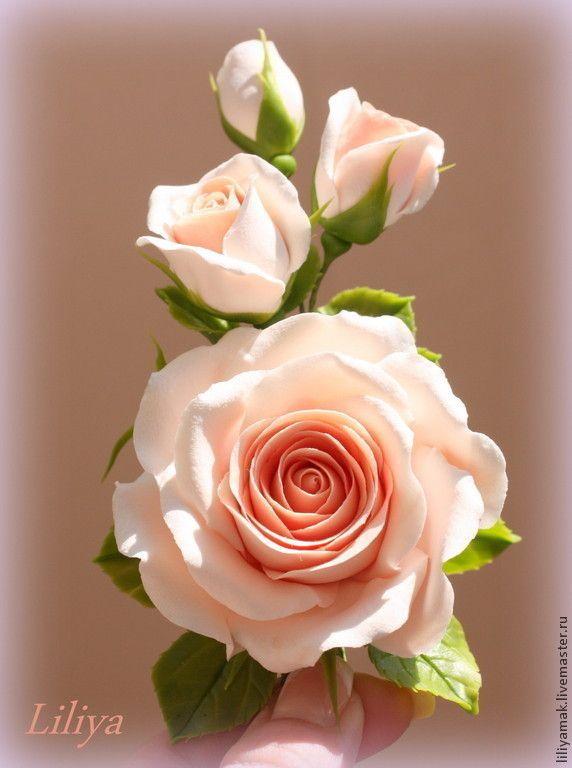 5db545d16b6b3d4645cbb273676i--ukrasheniya-roza-s-butonami-persikovo.jpg (572×768)