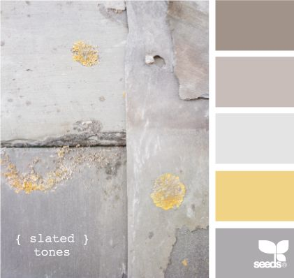 Grey and gold...I have GOT to come up with a hipper scheme in the family room. I have that giant gray stone wall with flecks of gold/rust and tan furniture. What I've got so far isn't cutting it...help me!