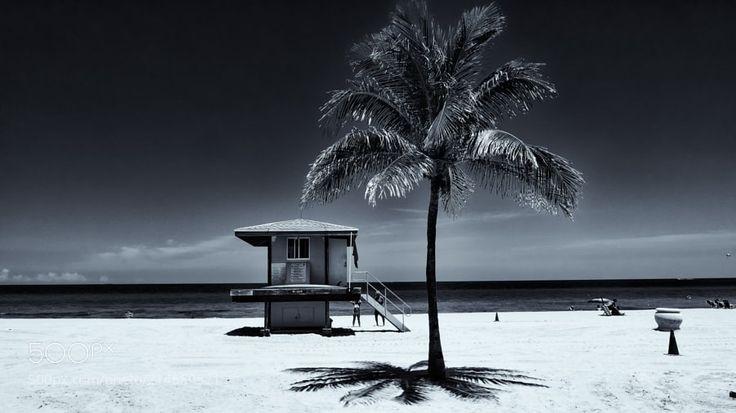 Perfect Day - Shot at Hollywood Beach Florida.