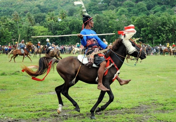 This picture taken on March 14, 2012 shows a Pasola rider preparing to throw his spear during the pasola war festival at Wanokaka village in West Sumba, East Nusa Tenggara. The Pasola ritual is a war festival between two groups with hundreds of riders on horseback throwing spears to the opposing group.