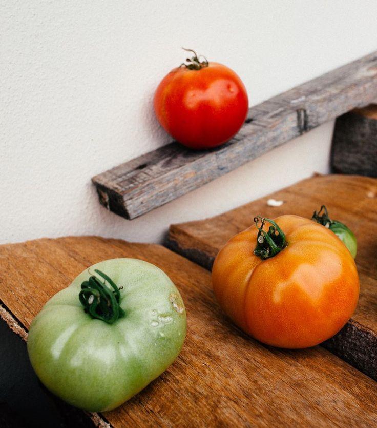 Rodinné foto  taky se těšíte na čerstvou zeleninu? Já moc!