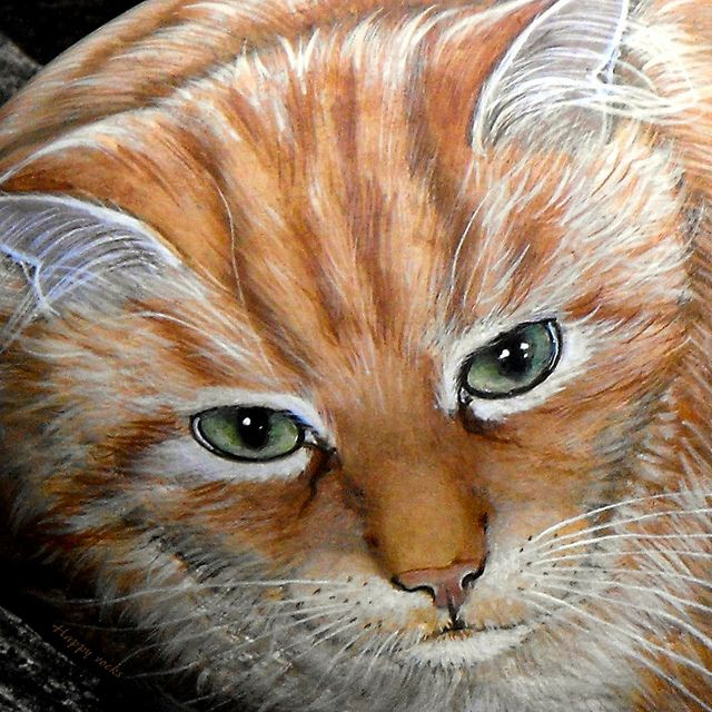 109 Best Images About Painted Rocks Cats On Pinterest