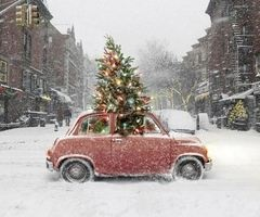 it feels like christmas in winter wonderful wonderland