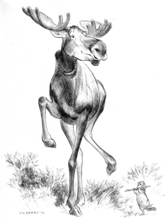Dancing moose sketch