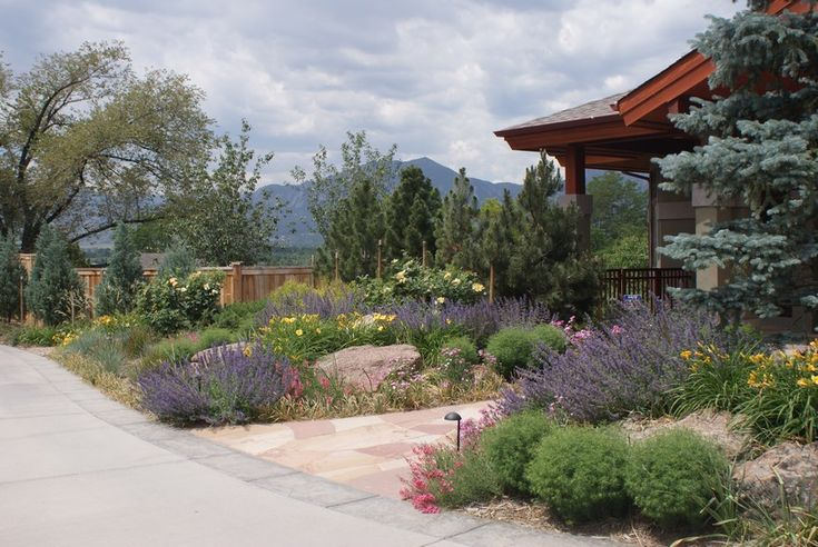 front yard drought tolerant landscape 10 handpicked ideas to discover in gardening. Black Bedroom Furniture Sets. Home Design Ideas