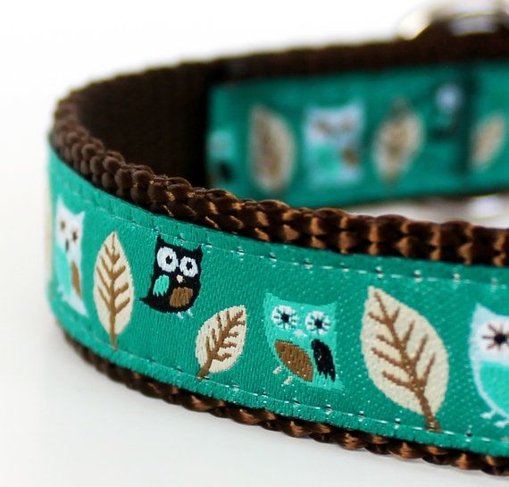 Hey, I found this really awesome Etsy listing at http://www.etsy.com/listing/69047036/owl-dog-collar-in-teal-green-hootie