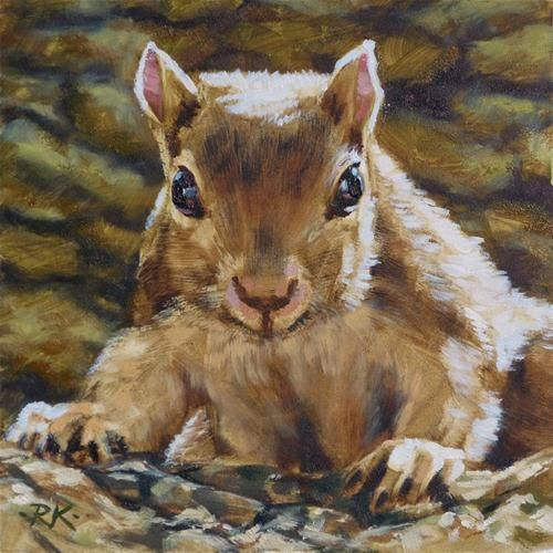 12 Best Images About Watercolor The Gray Squirrel On