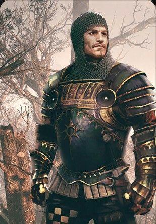 m Fighter armor Menno Coehoorn
