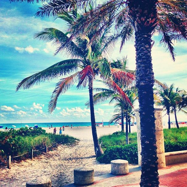 This is what your January looks like in Miami. 37 reasons why Miami is the best ( and weirdest) city in the U.S.A.