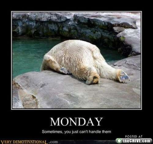 Ha! This is what I look like on Monday mornings, and tuesday morning, and Wednesday morning....