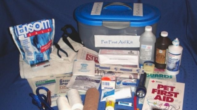 The weblog for the American Pet Center in NYC outlines a comprehensive dog first aid kit you can put together over time which includes a muzzle, nail trimmers, tweezers, a rectal thermometer, saline solution, an inflatable protective collar, bandages, hydrogen peroxide, and a few other items. Cat first aid kits are similar; the only real difference is in the muzzle and protective collar.