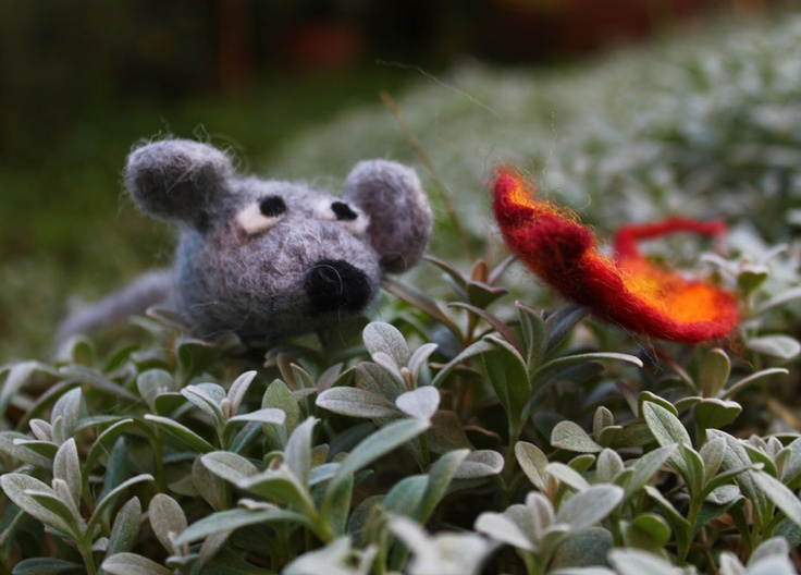 A little mouse in my garden!