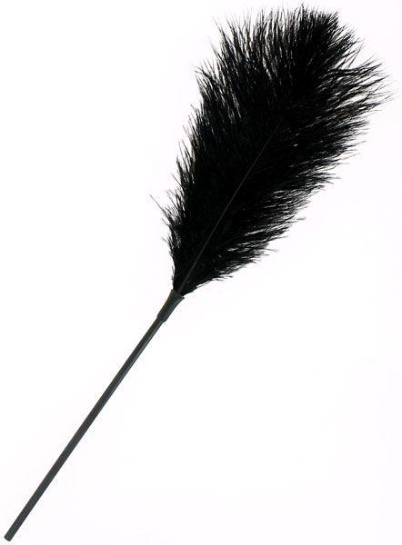 Plume noire sur tige - 46 cm - SM et domination/Fouet et martinet - my-sexshop.fr