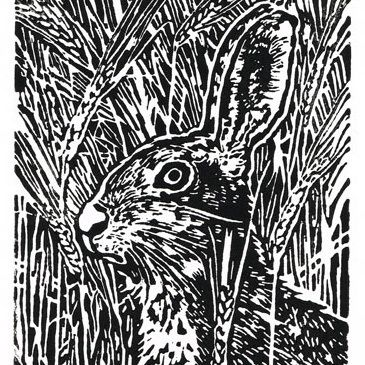 Hare in the Barley - Original Hand Pulled Linocut Print