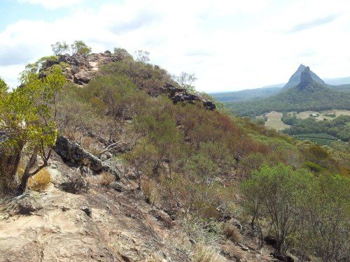 View of Mount Coonowrin and Mount Beerwah from Mount Ngungun summit