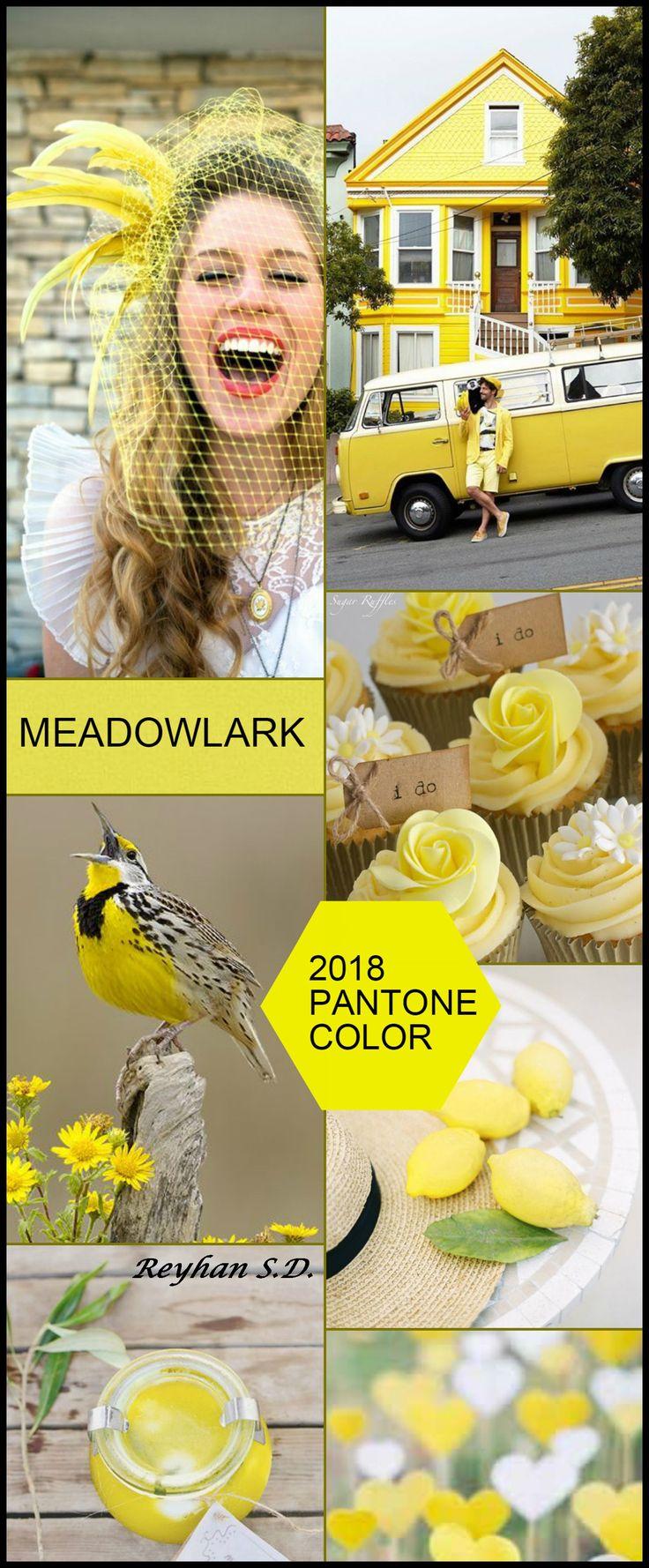 '' Meadowlark - 2018 Pantone Color '' by Reyhan S.D.