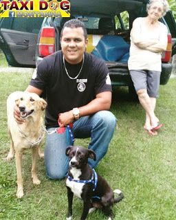 TAXI DOG MONTANHA TRANSPORTE DE ANIMAIS NO RIO DE JANEIRO: Mel & Preta GilDe Coelho Neto-RJ para São Roque-Pa...