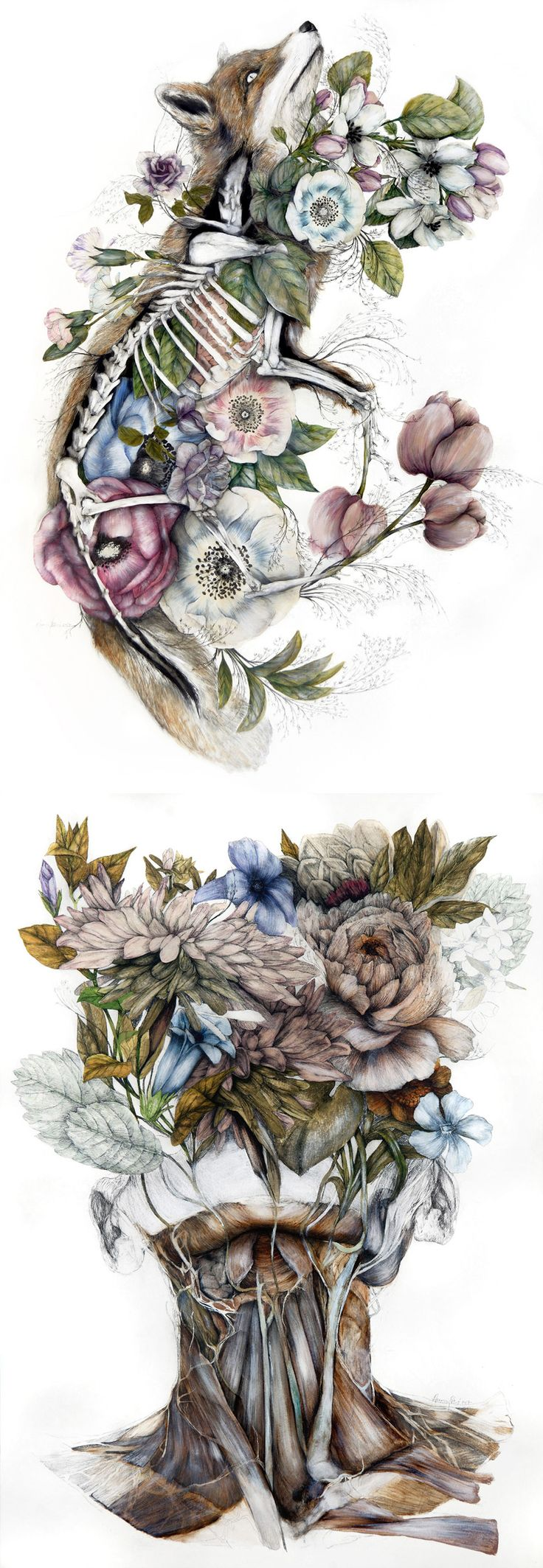Mimesis: New Anatomical Paintings Depicting Flora and Fauna by Nunzio Paci